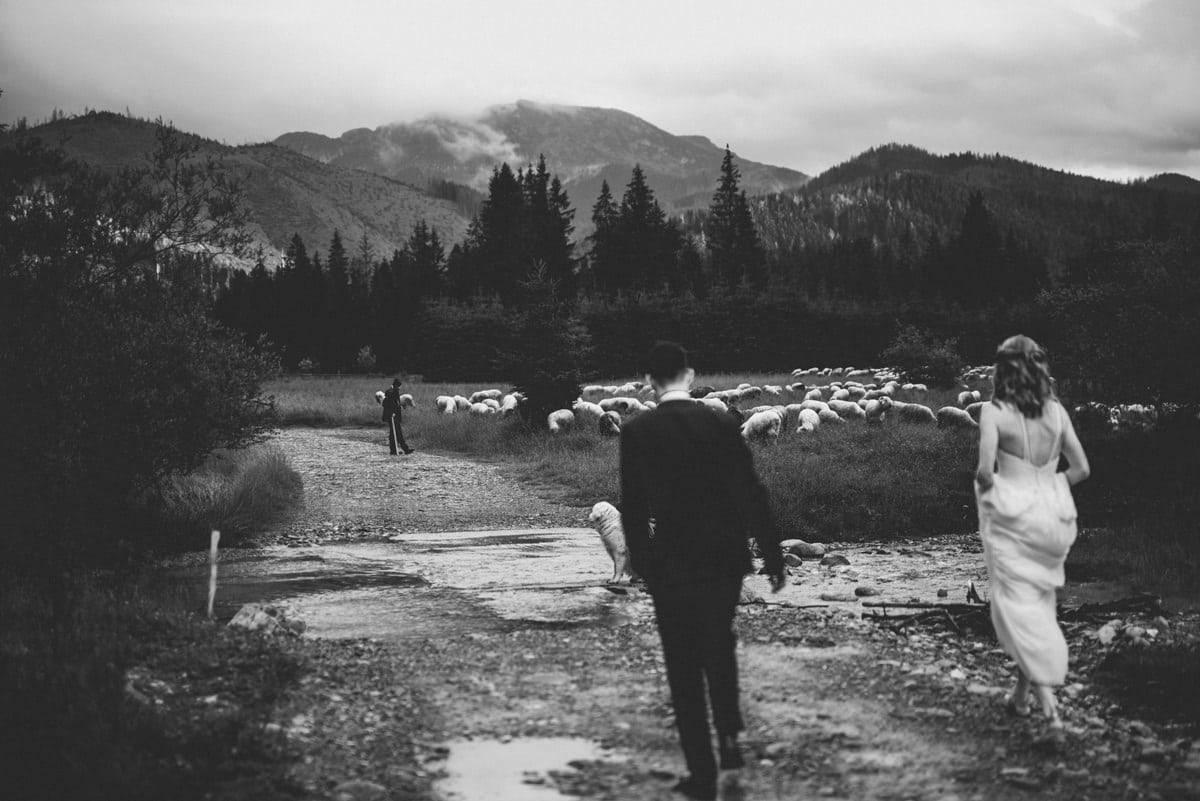 Przyjęcie weselne w Ziębówce - Patrycja i Paweł 90