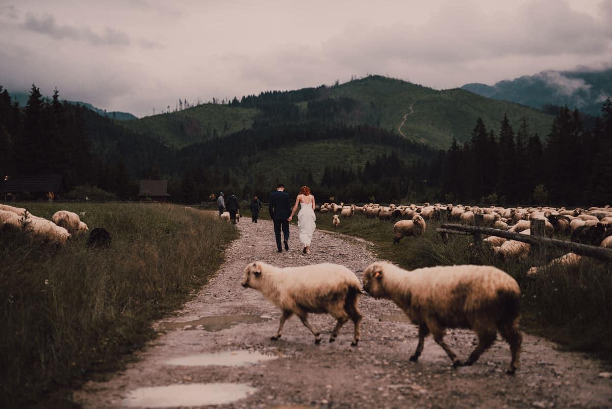 Przyjęcie weselne w Ziębówce - Patrycja i Paweł 95