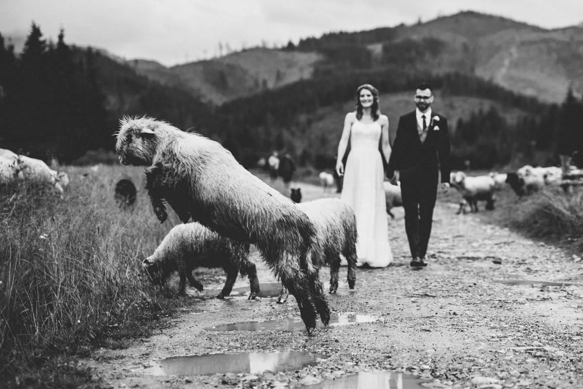 Przyjęcie weselne w Ziębówce - Patrycja i Paweł 96