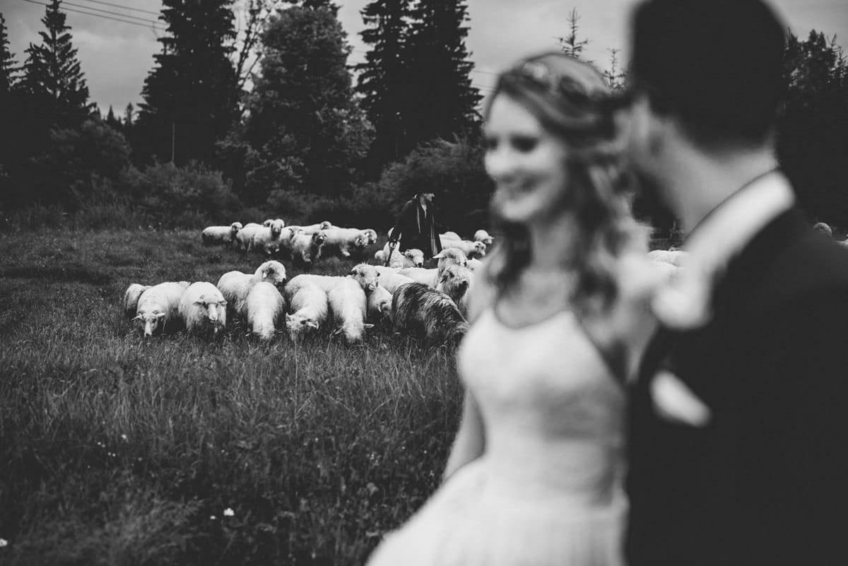 Przyjęcie weselne w Ziębówce - Patrycja i Paweł 97