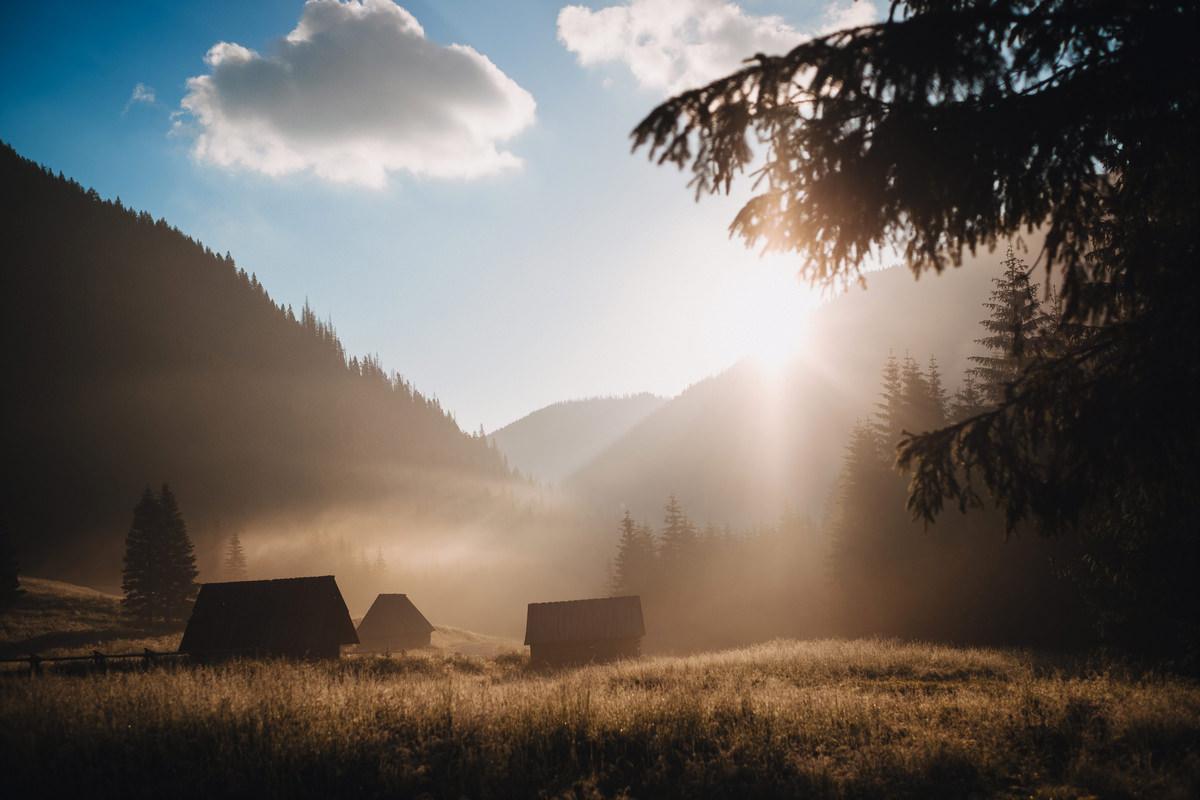 Dolina Chochołowska - sesja ślubna w Tatrach 7